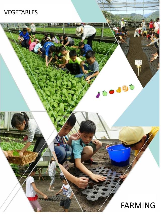 2018春夏食農教育一日體驗營