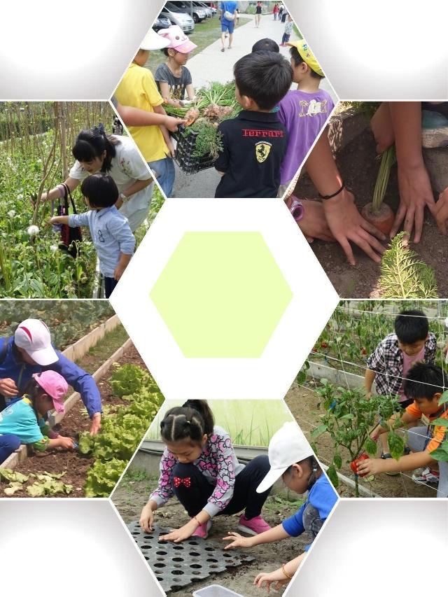 2018盛夏食農教育一日體驗營