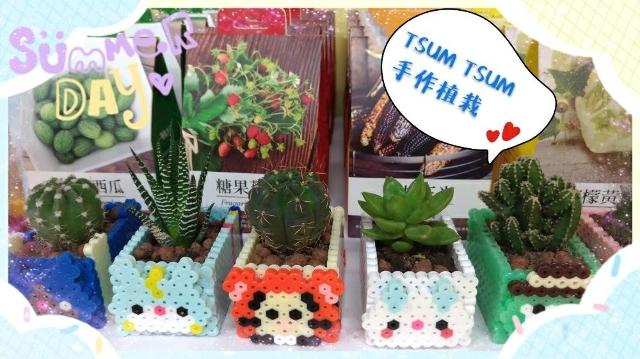 親子手作課程-動動小手種物TSUM&TSUM 植物盆拼豆課程