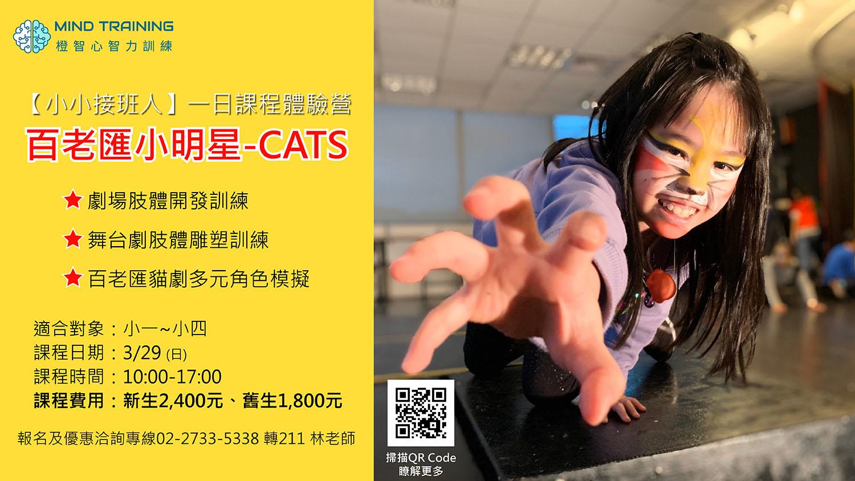 3/29(日)-百老匯小明星-CATS