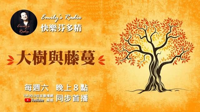 《Emily老師快樂芬多精》廣播節目2020/09/19 單元01:大樹與藤蔓